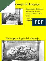 Neuropsicologia Del Lenguaje