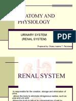 URINARY SYSTEM.pdf