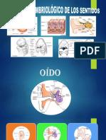 Embriologi de los sentidos.pptx