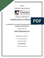 International Law Project_Semester 6