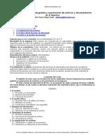 gestion-organizacion-archivos.doc