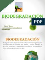 biodegradacion-130808163348-phpapp02