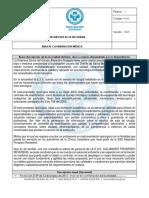 MODELO - DESCRIPCION DE LA NECESIDAD AUDITORIA.docx