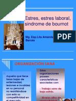 estres-laboral-sindrome-de-bournot-2016.pdf
