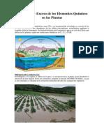 Deficiencia y Exceso de los Elementos Químicos en las Plantas.docx