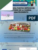 Evidencia Puntos Críticos en Actores de la cadena.pdf