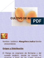 cultivo-de-mango.ppt