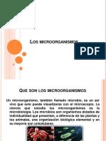 LOS MICRORGANISMOS