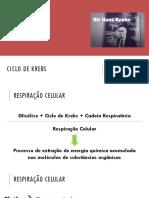 Bioquímica - Aula 9 - Ciclo de Krebs