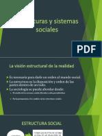 Estructura y Sistemas Sociales