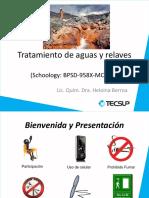 Tratamiento_de_aguas_y_relaves (2).pdf
