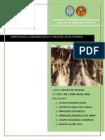erosion FINAL.pdf