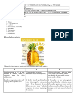 FICHA-PRÁCTICA.doc jonathan.pdf