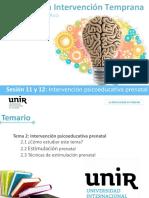 11 y 12-Intervención Psicoeducativa Prenatal