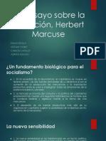 Exposiciocc81n de Un Ensayo Sobre La Liberaciocc81n