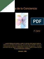 Optimized Conciencia 1 semestre 2008  F Ceric.ppt