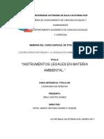 Instrumentos Legales en Materia Ambiental
