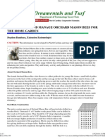 How to Raise and Manage Orchard Mason Bees