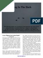 CNTU Flying Tipplers in the Dark