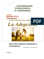 Adopcion Civil i