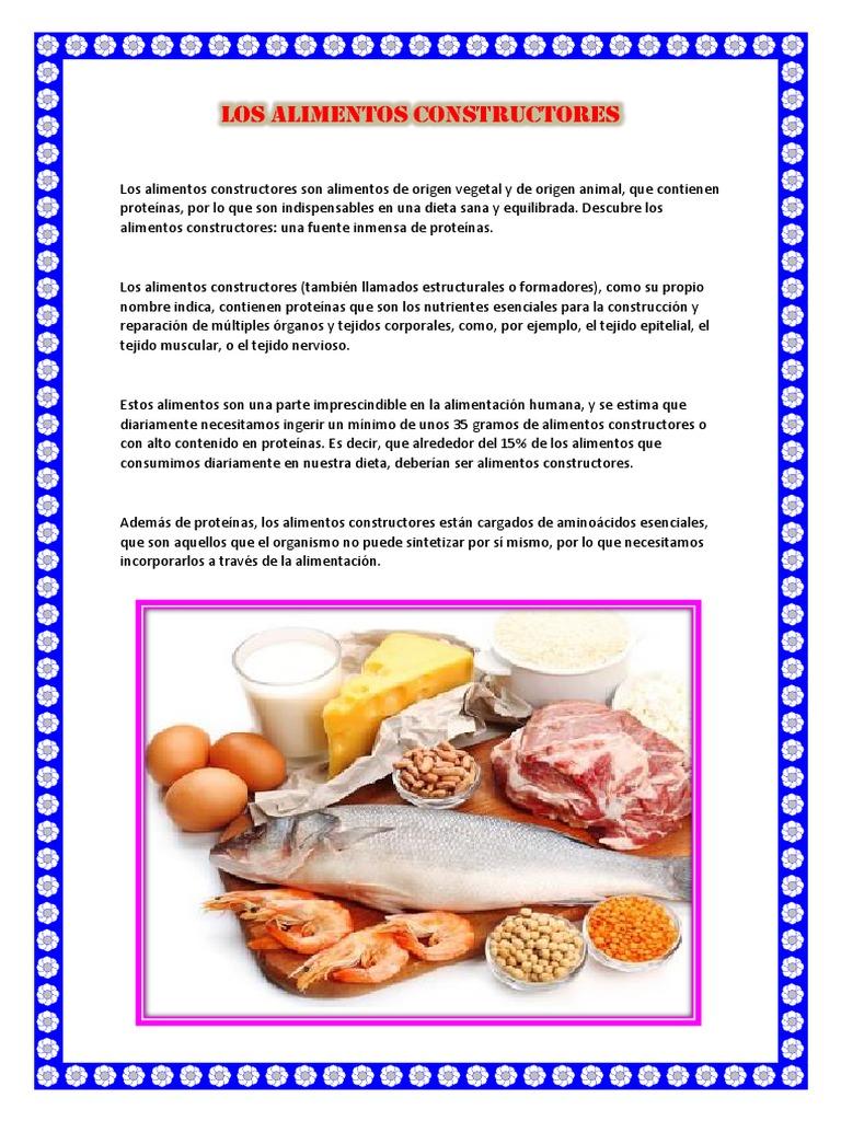 LOS ALIMENTOS CONSTRUCTORES.docx