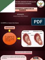 desprendimiento prematuro d placenta
