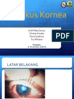 CRS - Ulkus Kornea 2