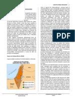 21 - Conflitos Árabes Israelenses PDF