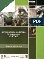 plagas.pdf