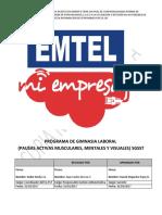 Programa Gimnasia Laboral Empresa.pdf