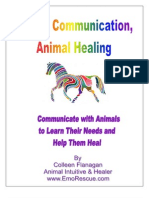 Animal Communication Animal Healing