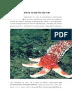 Informe sobre estrellas de mar
