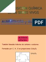 COMPOSICION DE LOS SERES VIVOS.pdf