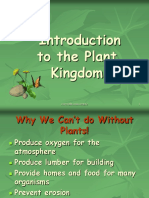 5_introduction to plants.ppt