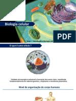 Aula de Biologia Celular