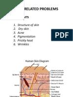 Presentation on Skin