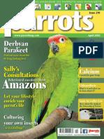 Parrots 2016 04 Englishmagazines