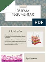 Seminário Sistema Tegumentar