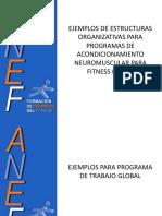 2.1-+EJEMPLOS+DE+ORGANIZACIONES+METODOL$C3$93GICAS+FITNESS+BASICO.pdf