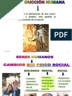53985_4anexoREPROD.HUMANA-08.ppt