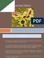1 Las Bacterias