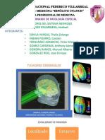 Tumores Del Sistema Nervioso- Grupo 3 (1)