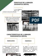 Imagen Radiografica Dental