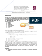 Arco Reflejo Equipo 5.docx