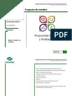 PE Proyeccion Personal y Profesional 23jul18 Versionfinal 1