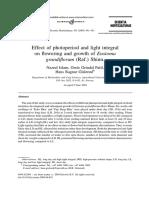 islam2005.pdf