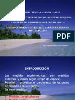 Medidas Morfometricas y Partes Externas Del Pescado