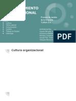 Comportamiento Organizacional Final 20190817