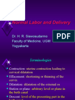 Normal labor and Delivery.PPT