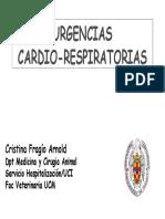 cardiorespAMAVC-25042007100335